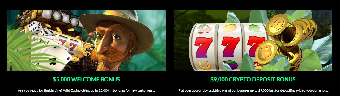 wild casino bitcoin